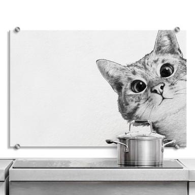 Spritzschutz Graves - Sneaky Cat