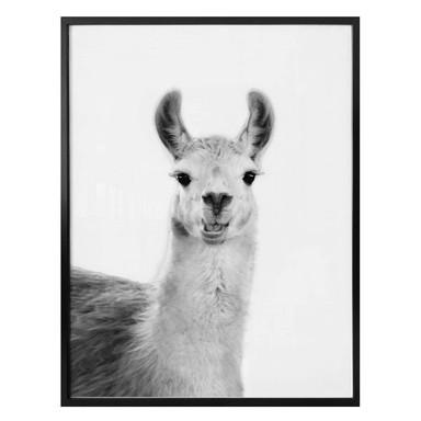 Poster Sisi & Seb - Happy Lama