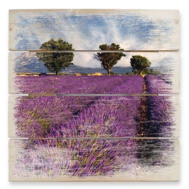 Holzbild Lavendelfeld - Bild 1