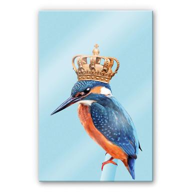 Acrylglasbild Loose - Kingfisher