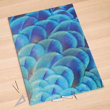 Folienbogen (100x150cm) - Federvieh