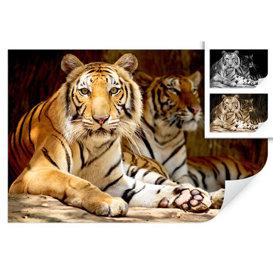 Wallprint Zwei Königstiger
