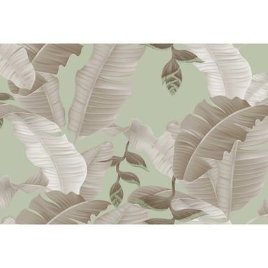 Livingwalls Fototapete ARTist Heliconia mit Palmenblättern grau, grün - Bild 1