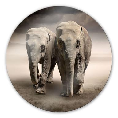 Glasbild Die Elefanten - rund