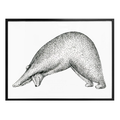 Poster Kvilis - Yoga Bär 01