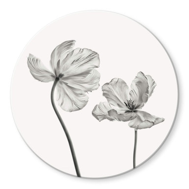 Glasbild Grønkjær - Tulpenblüte - Rund