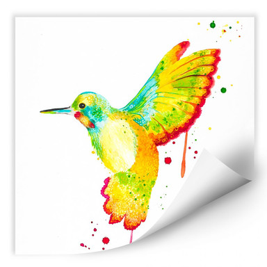 Wallprint Buttafly - Kolibri - quadratisch