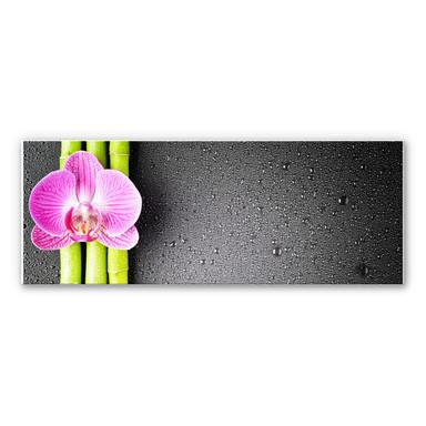 Wandbild Orchid and Bamboo - Panorama (horizontal)