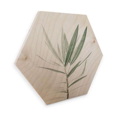 Hexagon - Holz Birke-Furnier Sisi & Seb - Oleander