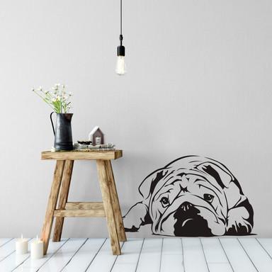 Wandtattoo Englische Bulldogge