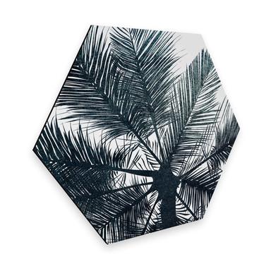 Hexagon - Alu-Dibond Kubistika - California Dreaming