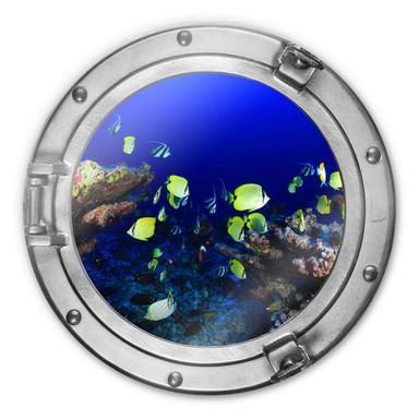 Glasbild rund 3D-Optik Bullauge - Bunte Wasserwelt - neongelbe Fische