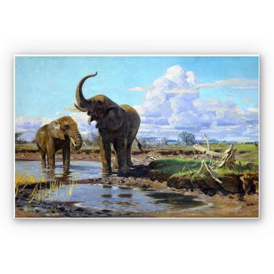 Hartschaumbild Kuhnert - Elefanten an der Wasserstelle