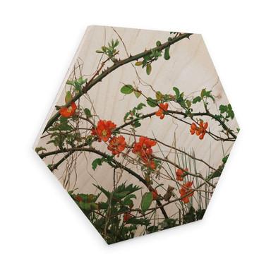 Hexagon - Holz Birke-Furnier Kadam - Flora Quittenblüte