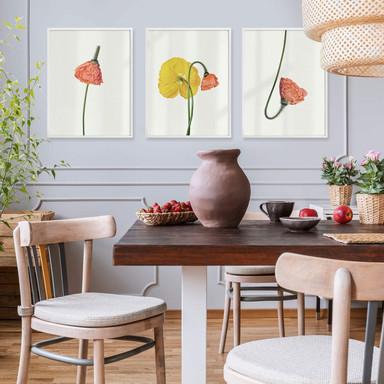 Poster-Set mit Bilderrahmen Die rote Blüte (3er Set) - Bild 1