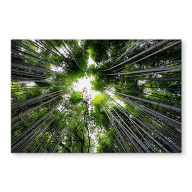 Glasbild Hugonnard - Wald in Japan