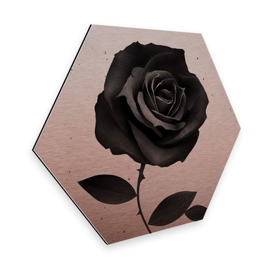 Hexagon - Alu-Dibond-Kupfereffekt Ireland - Fabric Rose