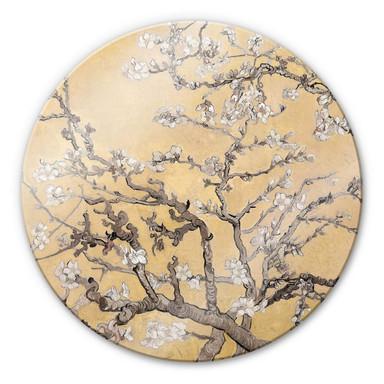 Glasbild van Gogh - Mandelblüte Creme - Rund