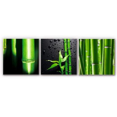 Hartschaumbild Bambus-Set (3-teilig)