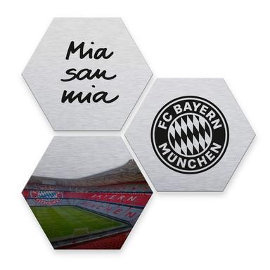 Hexagon - Alu-Dibond-Silbereffekt - FC Bayern (3er Set) - Bild 1