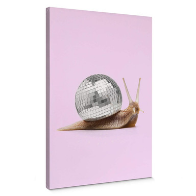 Leinwandbild Fuentes - Disco Schnecke
