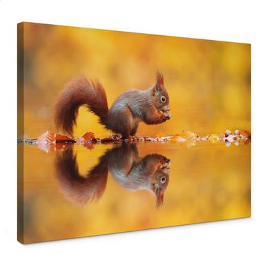 Leinwandbild van Duijn - Eichhörnchen mit Nuss