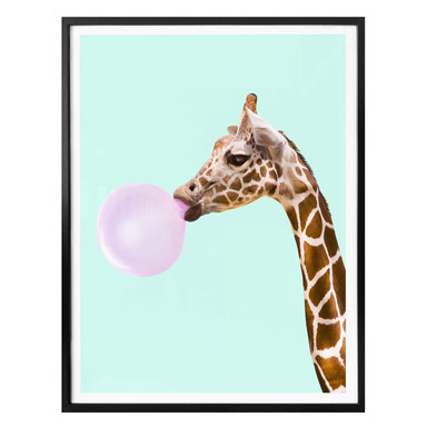 Poster Fuentes - Giraffe und ihr Kaugummi