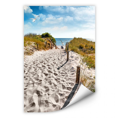 Wallprint Way to the Beach