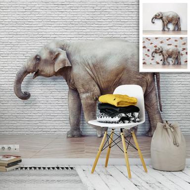 Fototapete The Walking Elephant