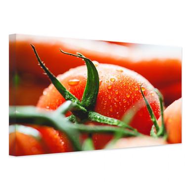 Leinwandbild Fresh Tomato