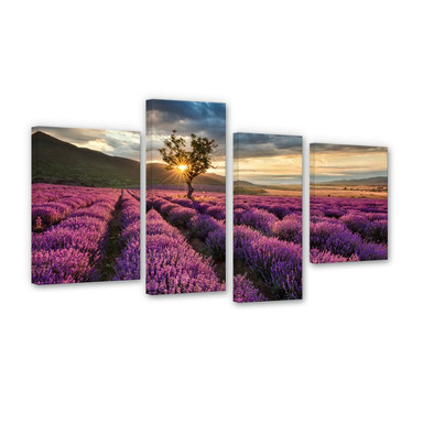 Leinwandbild Lavendelblüte in der Provence 4-teilig - Bild 1