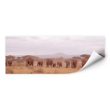 Wallprint Elefantenherde