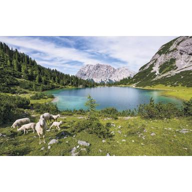 Fototapete Paradise Lake