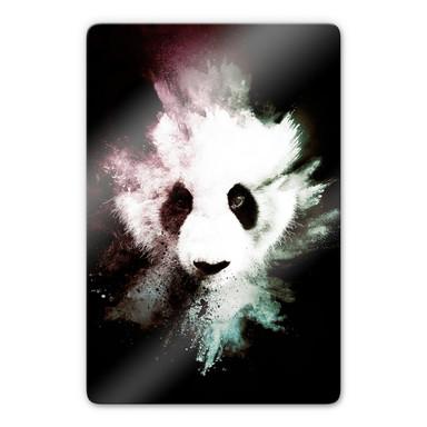 Glasbild Hugonnard - Wild Explosion: Panda