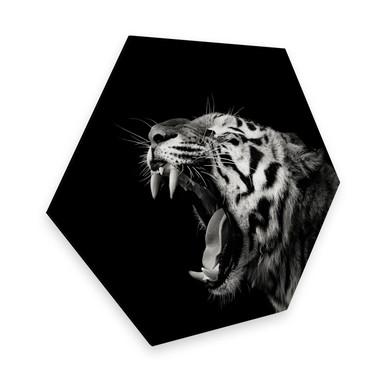 Hexagon - Alu-Dibond Meermann - Der Tiger
