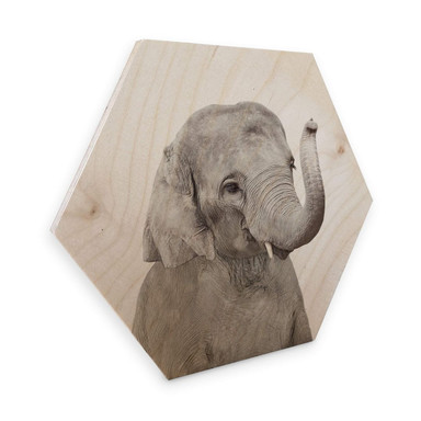Hexagon - Holz Birke-Furnier Sisi & Seb - Baby Elefant