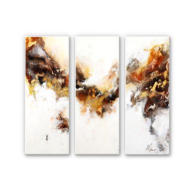 Wandbild Fedrau - Flüssiges Gold 03 (3-teilig)