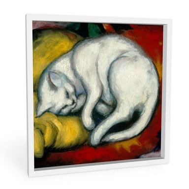 Wandbild Marc - Die weiße Katze - quadratisch