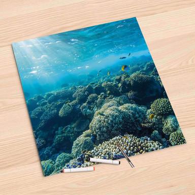 Folienbogen (60x60cm) - Underwater World