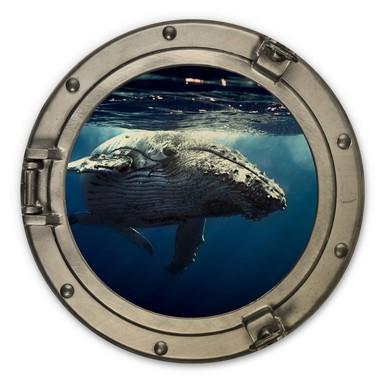 Holzbild 3D-Optik Bullauge - Buckelwal auf Tauchgang - Rund