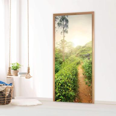 Türfolie - Green Tea Fields