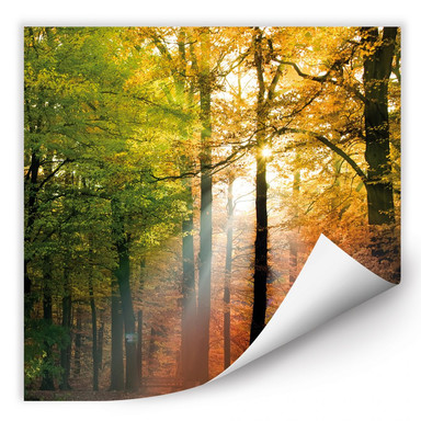 Wallprint Goldener Herbst