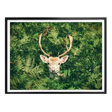 Poster Versteckspiel im Wald