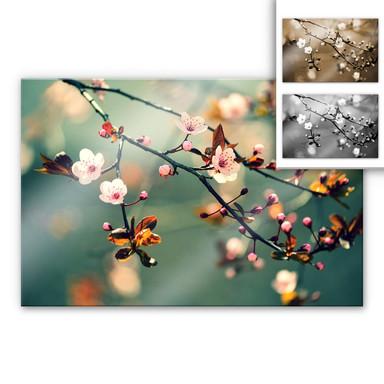 Acrylglasbild Frühlingserwachen