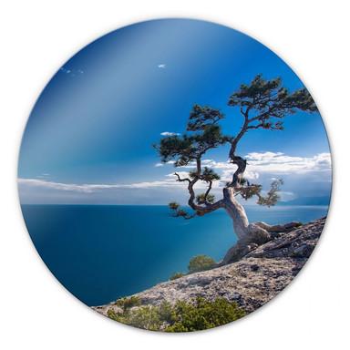 Glasbild Sea and Tree - rund