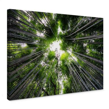 Leinwandbild Hugonnard - Wald in Japan