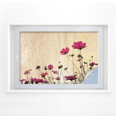 Sichtschutzfolie Blumenwiese