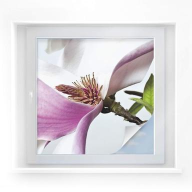 Sichtschutzfolie Magnolie - quadratisch