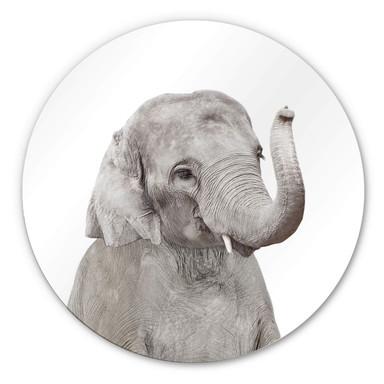 Alu-Dibond Sisi & Seb - Baby Elefant - Rund