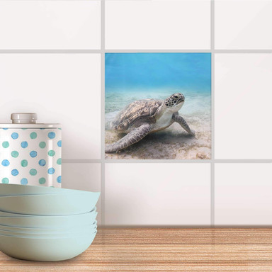 Fliesenaufkleber - Green Sea Turtle